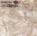 CB818A